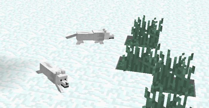 Cómo domesticar zorros en Minecraft (1.14) 3