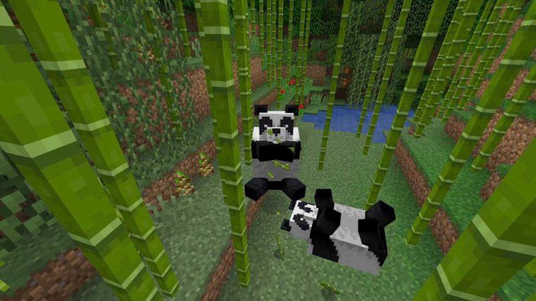 Minecraft - Cómo domesticar Pandas (y criarlos)
